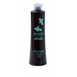 Olej na masáž-500ml - mentol